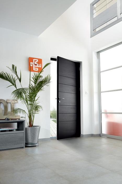 porte d 39 entr e aluminium alin a. Black Bedroom Furniture Sets. Home Design Ideas